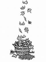 Coloring Bucket Leaf Fall Wooden sketch template