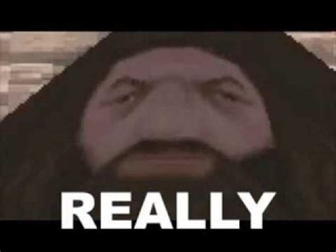 Hagrid Meme - really ps1 hagrid know your meme