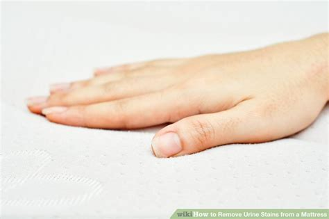 how to remove urine stains from mattress 3 ways to remove urine stains from a mattress wikihow