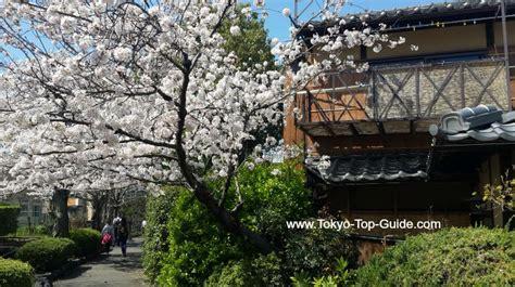 best things in tokyo top 10 best things to do in tokyo april 2018 tokyo top guide