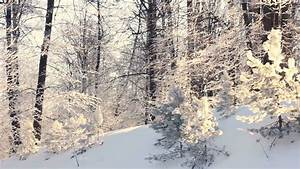 Winter Landscape Sumi Related Keywords - Winter Landscape ...