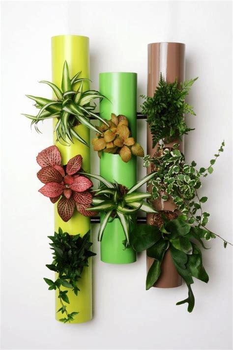 mur vegetal interieur pas cher mur vegetal interieur pas cher 2 cadre vegetal interieur survl
