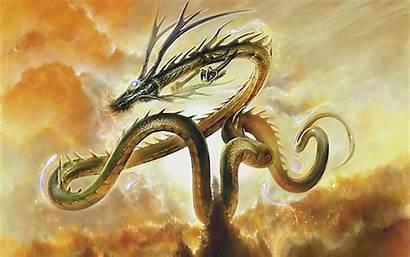 Dragon Japanese Background Wallpapersafari