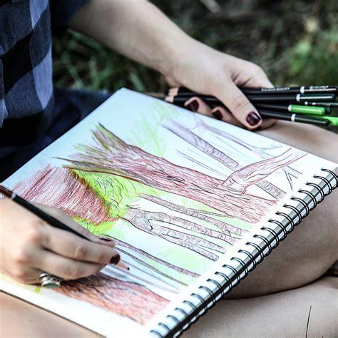 colore colored pencils  premium pre sharpened color