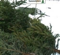 kostenlose christbaum entsorgung in 214 sterreich proplanta de