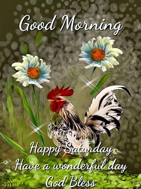good morning happy saturday   wonderful day god bless