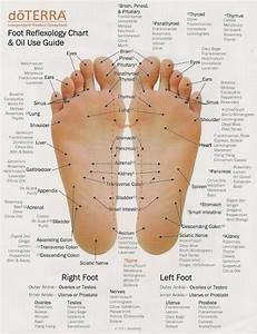 Foot Reflexology Chart And Doterra Use Guide