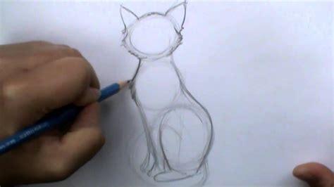 draw  basic cat sitting youtube