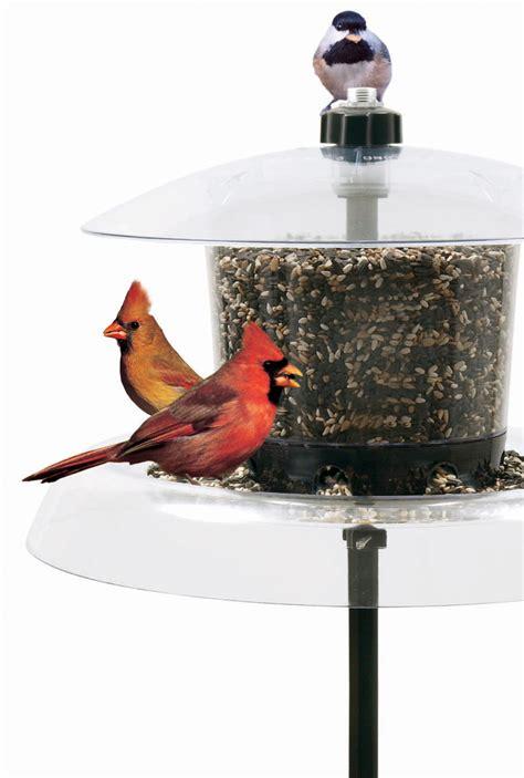 platform bird feeder jagunda squirrel proof bird feeder with auger jg a
