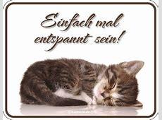 Katzen Sprüche Einfach mal entspannt sein FunSchilder