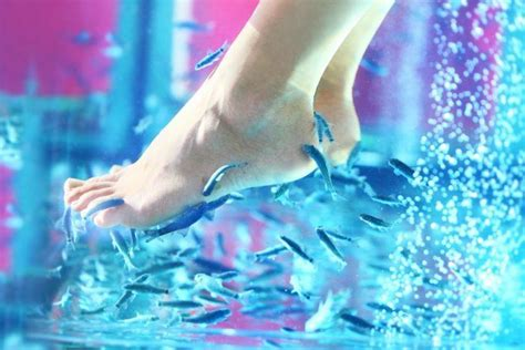 Poltrona Fish Pedicure : Different Types Of Pedicures You Can Try This Summer