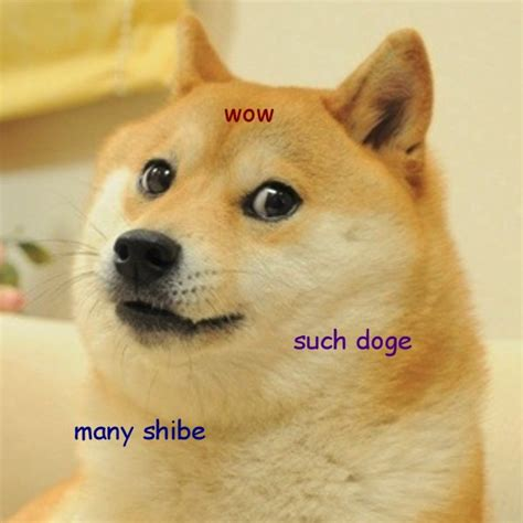 Such Doge Meme - memes the death or salvation of society neon tommy
