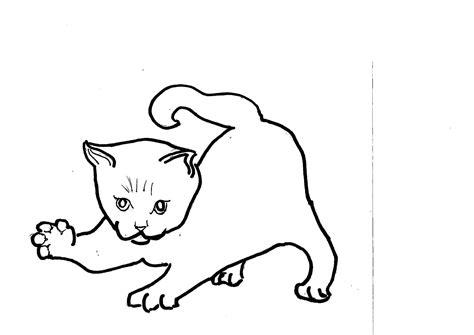 disegni da colorare dei gatti migliori pagine da colorare