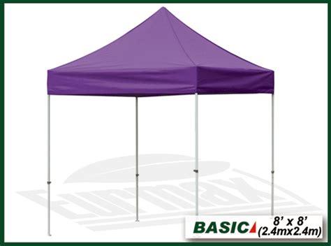 purple pop  canopy