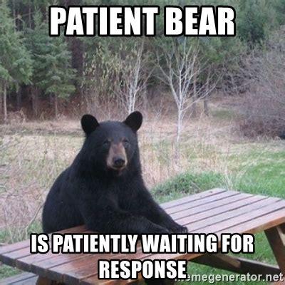 Patient Bear Meme - patient bear is patiently waiting for response patient bear meme generator