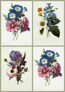 Vintage Floral Art Prints | www.pixshark.com - Images ...