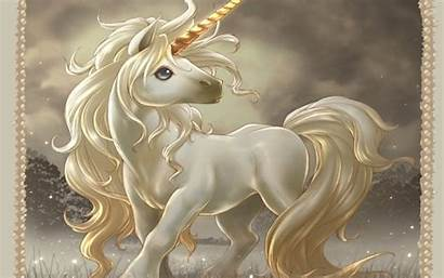 Unicorn Unicorns Desktop Backgrounds Magical Creatures Background
