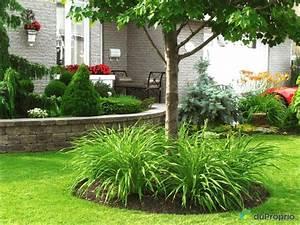 idee amenagement jardin devant maison With idee amenagement jardin devant maison 15 recherche on pinterest