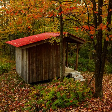 Shedding In Fall by Tool Shed In Fall Bethnchris