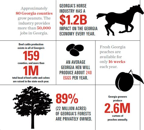 overview  georgia agriculture facts  statistics
