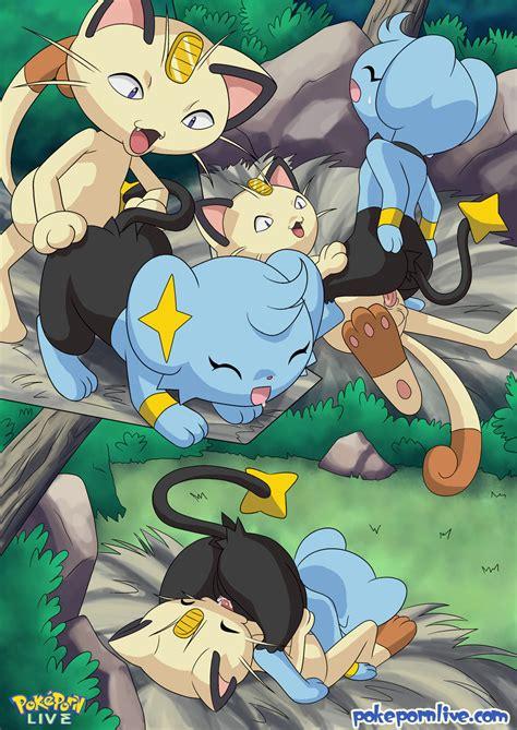 Read The Cats Meowth Pokemon Hentai Comic Hentai Porns