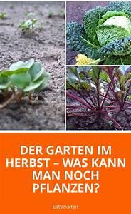 Welche Pflanzen Kann Man Im Herbst Pflanzen : die besten 25 terrasse gestalten ideen auf pinterest ~ Articles-book.com Haus und Dekorationen