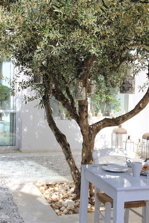 instagram tuin tuin inspiratie de mediterrane tuin woonblog