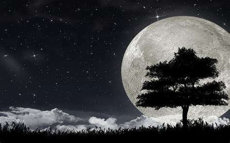 Moon Hd Wallpaper Background Image 1920x1200 Id