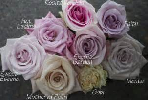 wholesale flowers denver colors flirty fleurs the florist inspiration