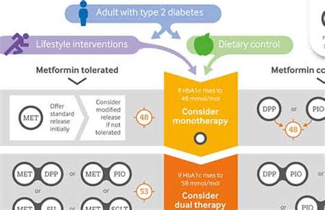 management  type  diabetes  adults summary