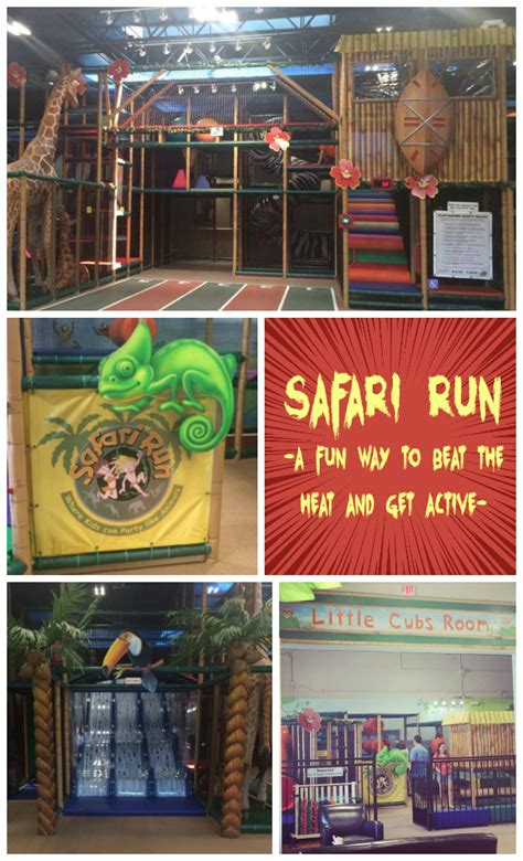 safari run  active   kids  summerindoors