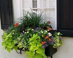 Bac A Fleur Balcon : bac fleurs sur le rebord de la fen tre 50 id es fascinantes jardinage pinterest bac ~ Teatrodelosmanantiales.com Idées de Décoration