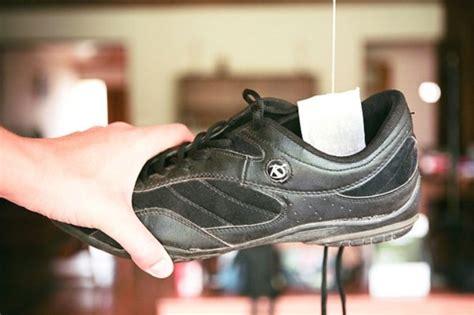 Stinkende Schuhe Teebeutel by 9 Gr 252 Nde Warum Sie Alte Teebeutel Aufsparen Sollten