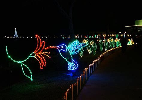 moody gardens festival of lights photo lynnh photos at