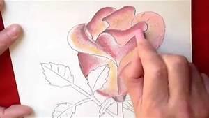 Comment Faire Du Rose En Peinture : dessin et coloriage d 39 une rose facile faire tuto ~ Melissatoandfro.com Idées de Décoration