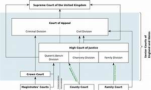 Court System And Legal Professionals