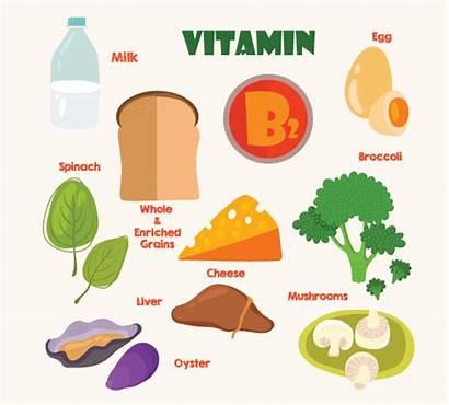 Vitamin Pregnancy During Pregnant B2 Complex Clipart