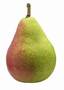 Paradise Pears (also known as Faccia Bella Pears ...  Pear