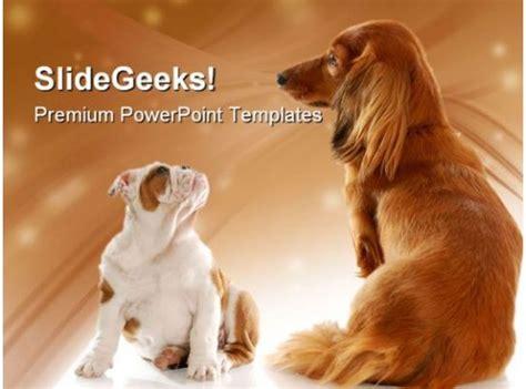 bull dog puppy  dachshund animals powerpoint templates