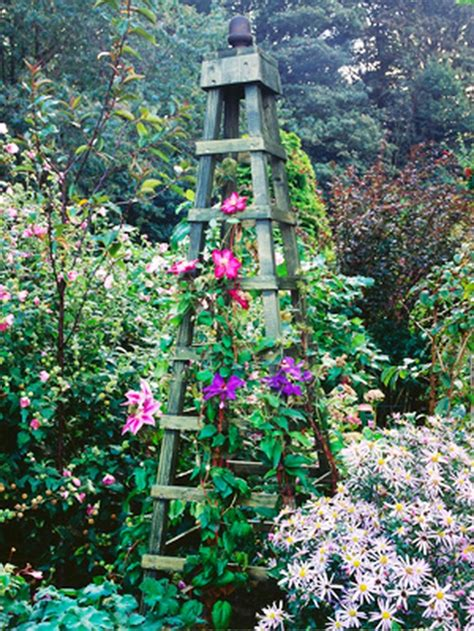 Make An Obelisk For Climbing Plants  Hgtv And Clematis