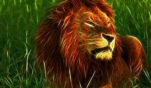 Animated Lion Roaring Gif | www.imgkid.com - The Image Kid ...