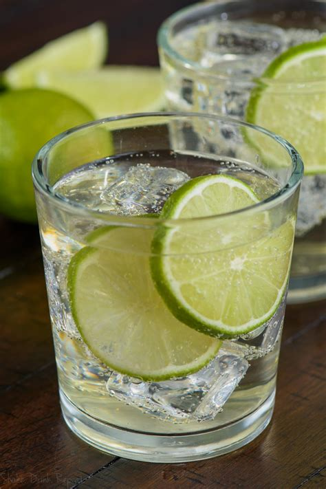 gin tonic bilder the gin and tonic recipe shake drink repeat