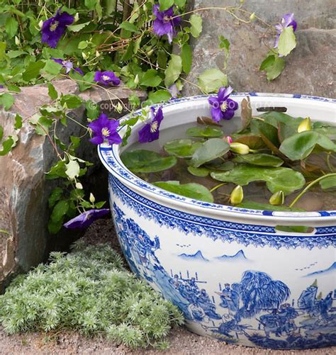 patio container water garden ideas home decorating
