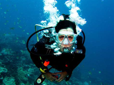 scuba diving mudjimba   woman island sunshine coast