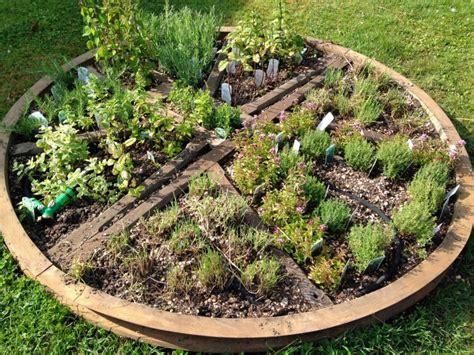 Kā izveidot ārstniecības augu dārziņu? Farmaceites ...