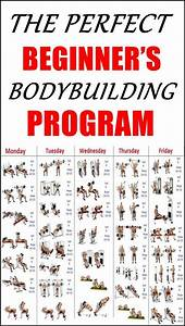 The Perfect Beginner U2019s Bodybuilding Program