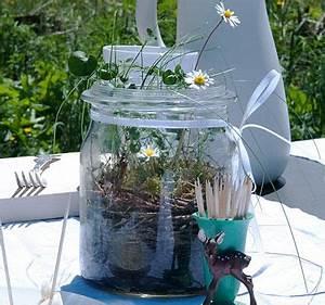 Minigarten Im Glas : mini garten im glas bild 14 living at home ~ Eleganceandgraceweddings.com Haus und Dekorationen