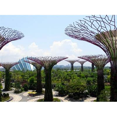Singapore Gardens by the Bay ReviewTravelSort