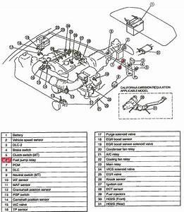 Miata Fuel Pump Wiring Diagram