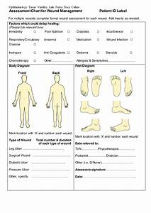 Assessment Chart For Wound Management Patient Id Lab U2026